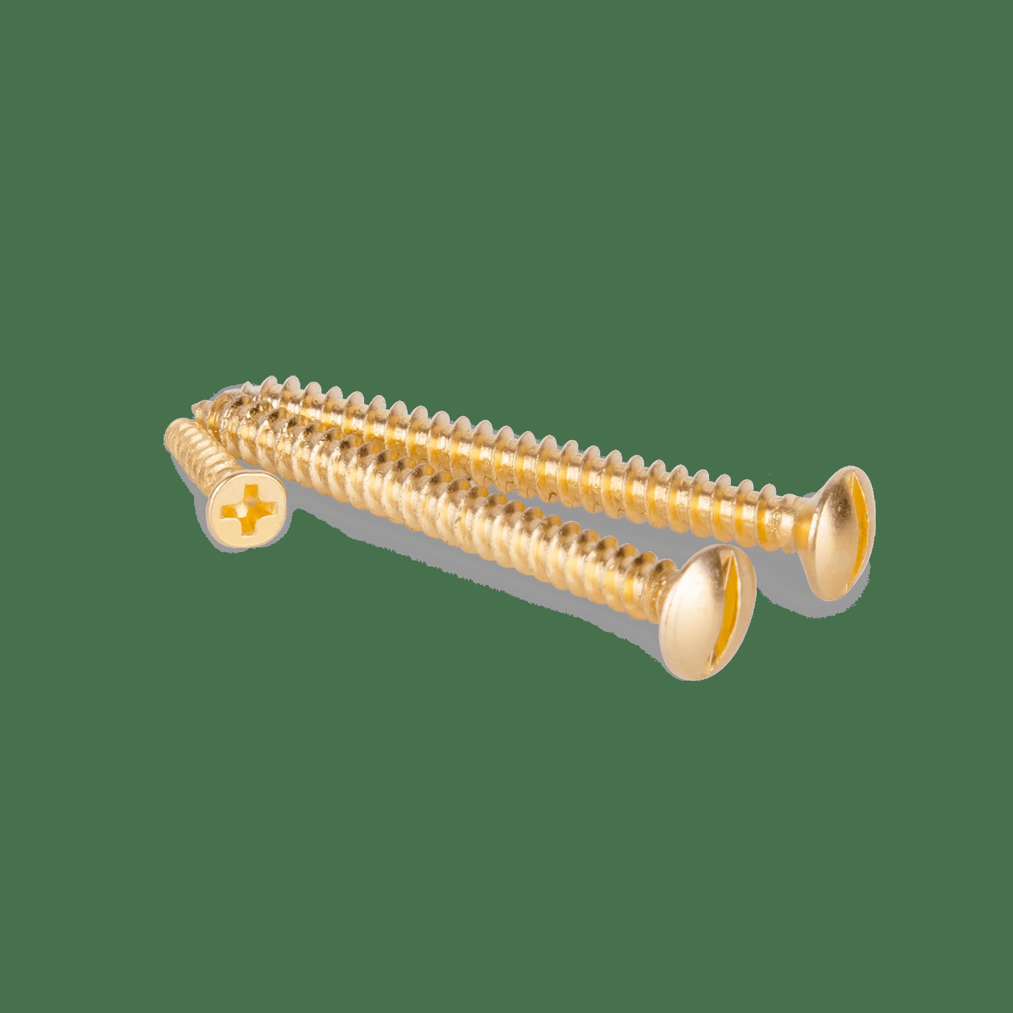 WL18-21-01/ Винты для накладного выключателя 3шт. (золото) Ретро